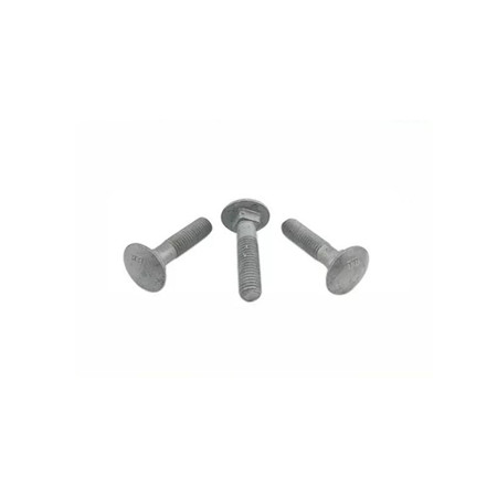 Stainless Steel 304 Square Neck Round Head Carriage Bolts M6 m8 M10 M12 M14 M16 M20