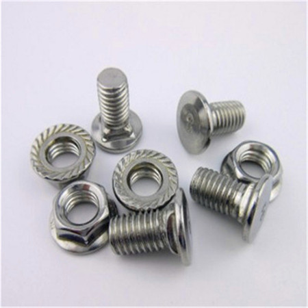DIN603 Stainless Steel SS304 A2 Carriage Bolt