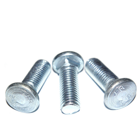 DIN603 SS 304 square head lag bolts mushroom head carriage bolt