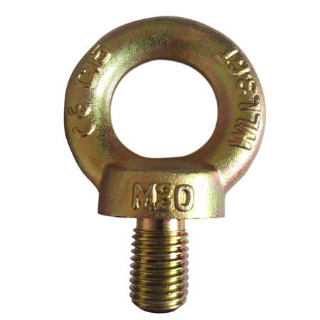 Din580 Din580 Stainless Steel Eye Bolt