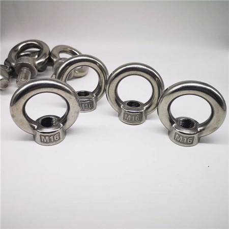 Stainless Steel Lag Eye Bolt